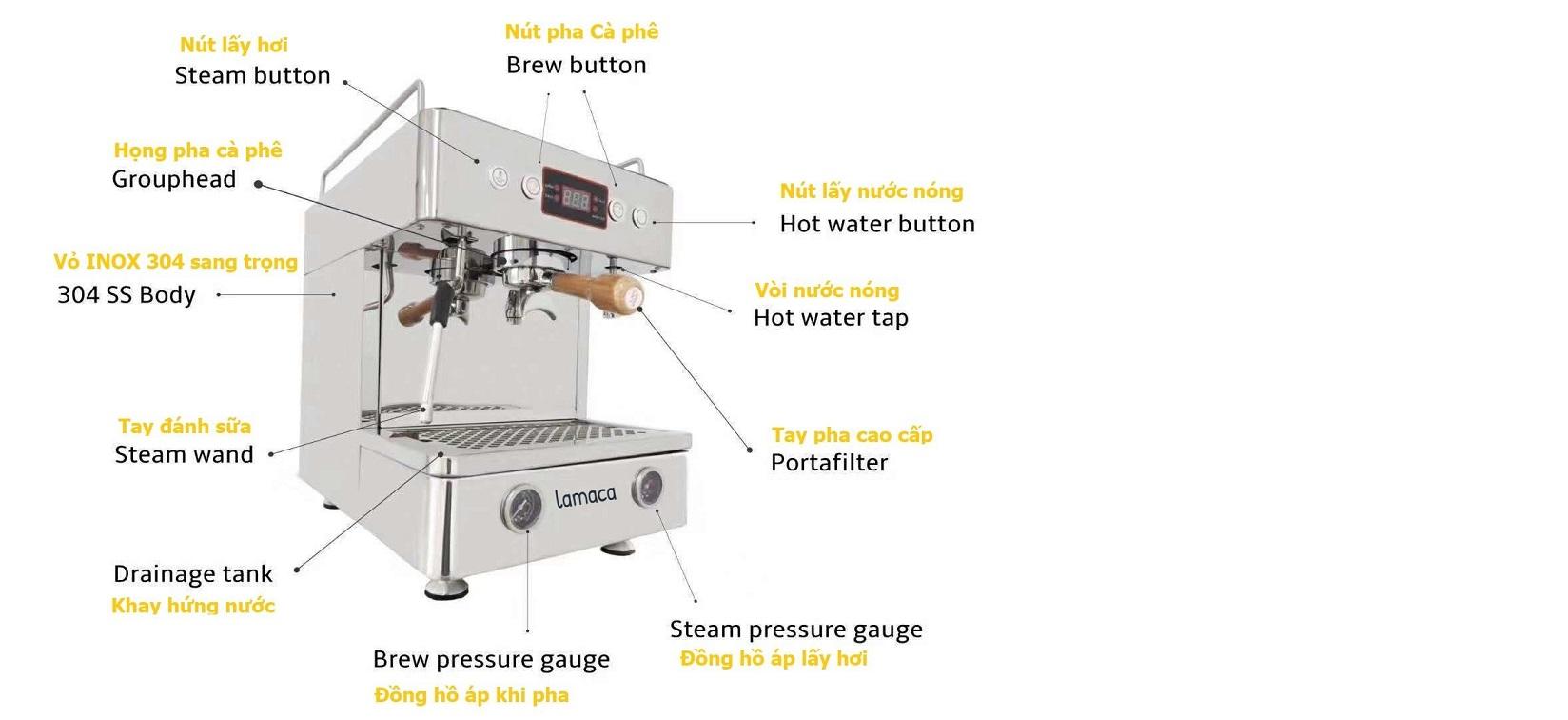 máy cà phê V8 Lamaca